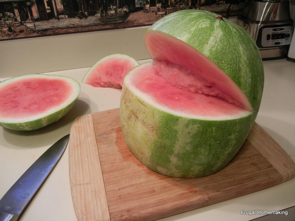 Watermelon Fruit Salad Shark
