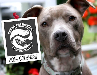 2014 Canine Companions Rescue Center calendar