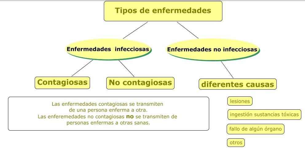 http://www.polavide.es/unidades6curso/mapas_conc6/enfermedad_tipos.html