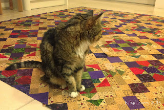 Bonnie Hunter's Easy Street Mystery Quilt with Cat