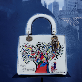 Lady Dior embroidered bag w/ art by Niki de Saint Phalle.