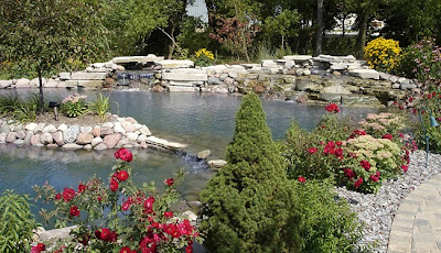 Integrity landscape installed water feature and plantings
