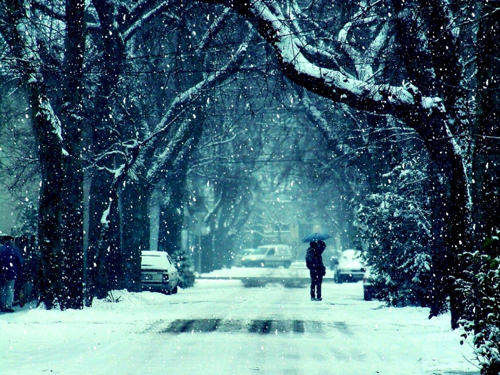 Winter Frost Snow Road Trees Couple Girl Guy Kiss Mood Feelings Photo HD Wall...