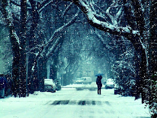 Winter Frost Snow Road Trees Couple Girl Guy Kiss Mood Feelings Photo HD Wallpaper