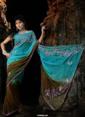 Bollywood Creative Sarees Collection 2011