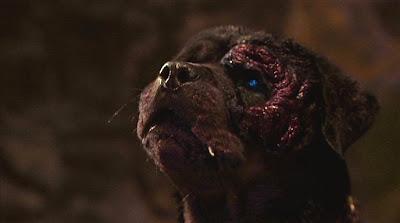 Rottweiler Brian Yuzna