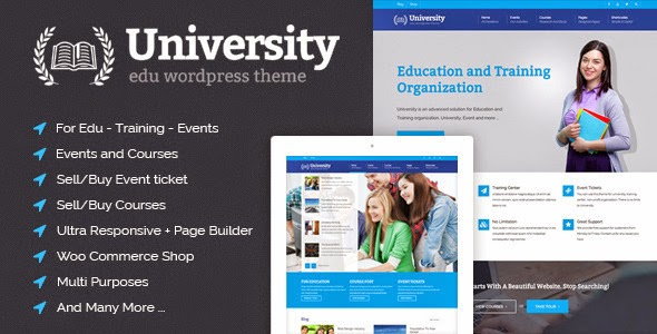 edu website theme