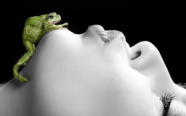 Magic Frog Kiss