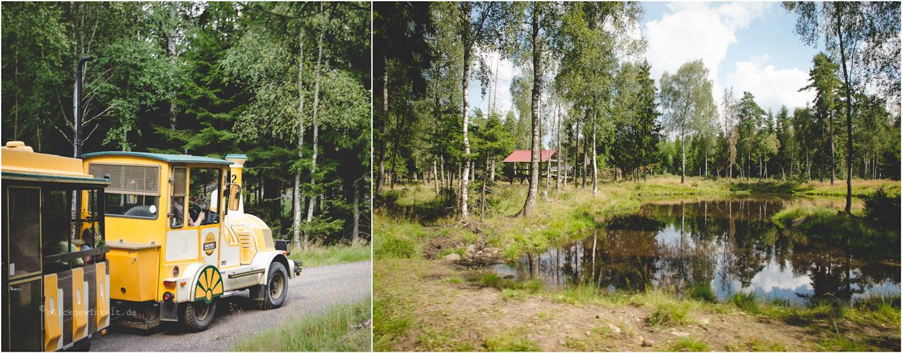 Gelände des Elchparks Smålandet in Schweden