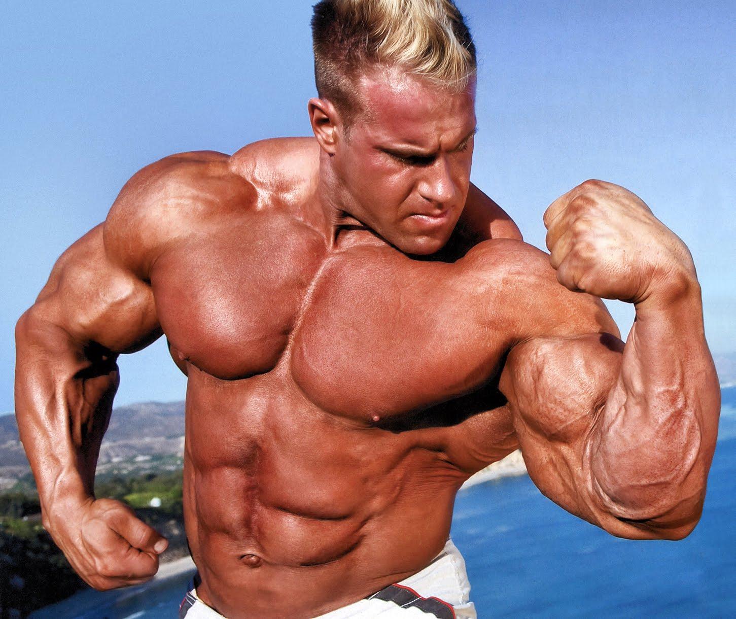 http://2.bp.blogspot.com/-fp16DsHjTLM/UIU2NX4tnaI/AAAAAAAAARg/zFc5hC2-0XE/s1600/Bodybuilder-744574.jpg