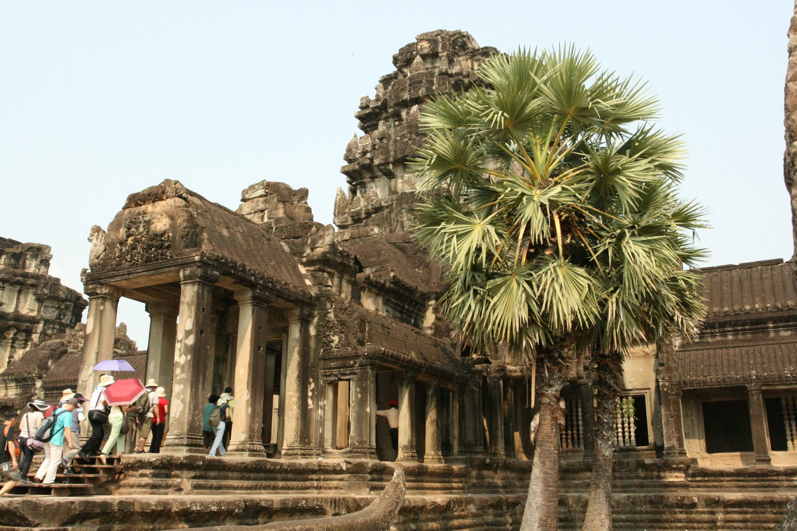 how to get to angkor wat from vietnam