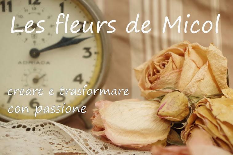 les fleurs de micol