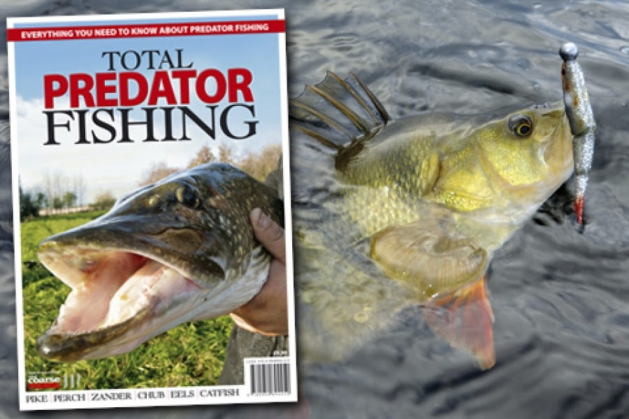 "PIKE ANGLERS CLUB : New predator fishing ""bookazine"" launched"