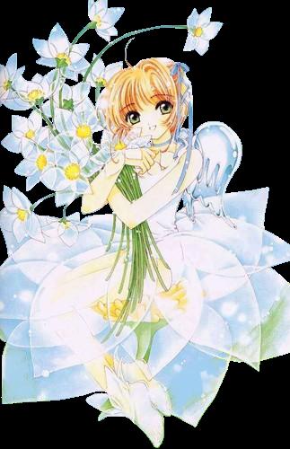 render Sakura Kinomoto