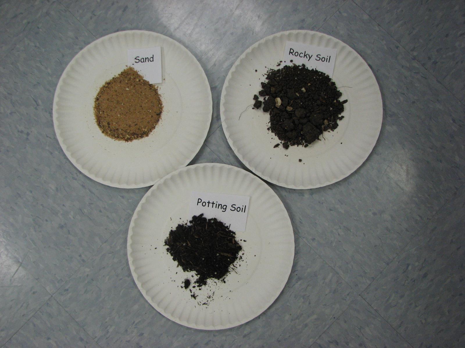First grade randomness rocks and soil exploration for Soil 1st grade