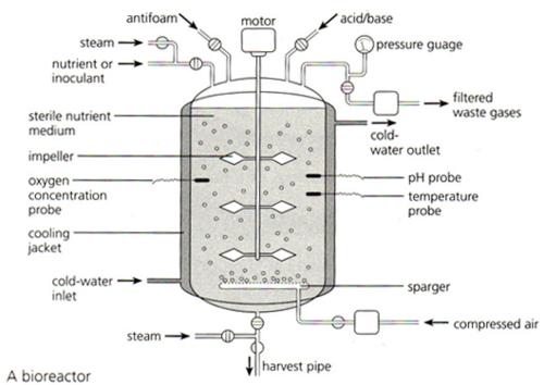 Frazer   Biology  5 8 Fermenter