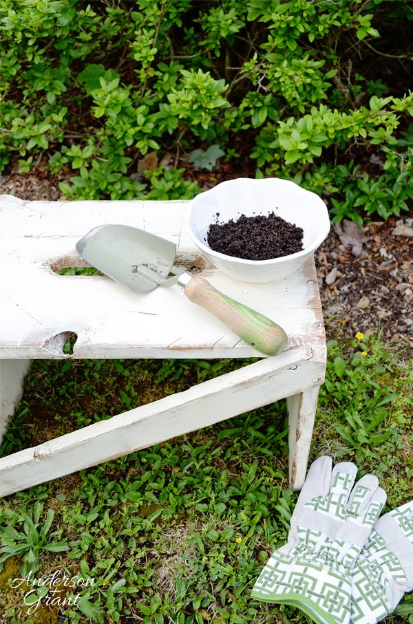 Anderson Grant How To Use Coffee Grounds As Fertilizer