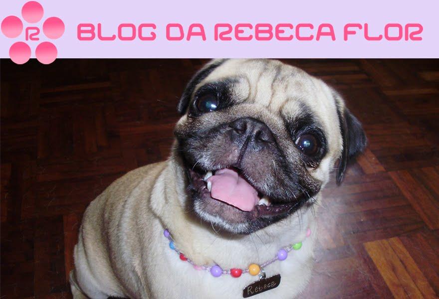 Blog da Rebeca Flor