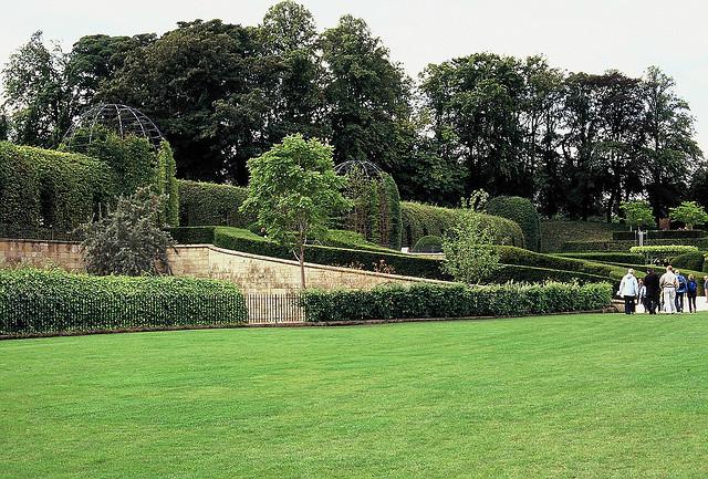 Jardines. Alnwick Garden, el Jardín del veneno, Inglaterra.