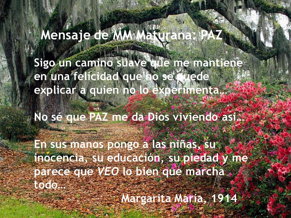 Mensaje de MM Maturana: PAZ