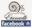 Etanaelli on facebookissa