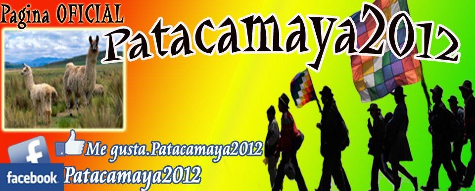 Patacamaya2012