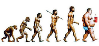 human junk food evolution