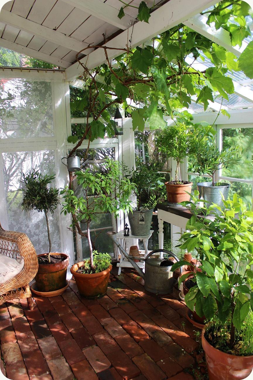 lilla blanka v xthus vintage greenhouse. Black Bedroom Furniture Sets. Home Design Ideas
