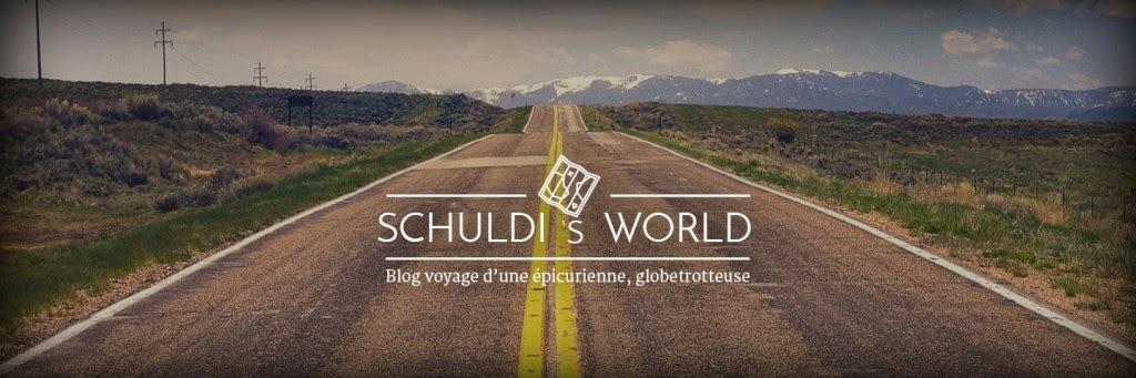 schuldi's world, blog, voyage