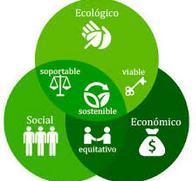 Sustentabilidad Siglo XX