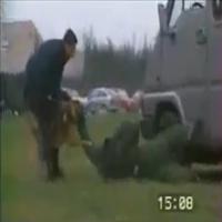 Cães policiais em ação