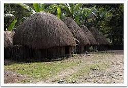 """"""" HONAI """" rumah adat masyarakat di pedalaman papua"""