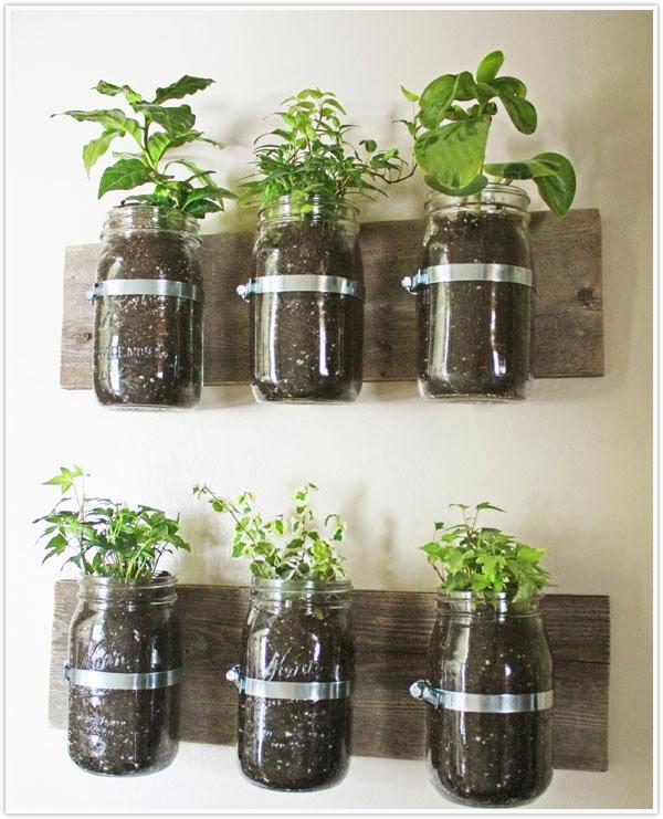 Indoor Gardening 101 radicalmontreal