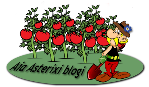 Aia Asterixi aia blogi