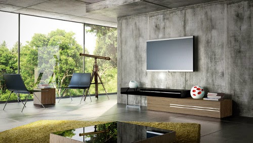 modern tv room inspirational ideas