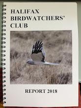 2018 HBWC report