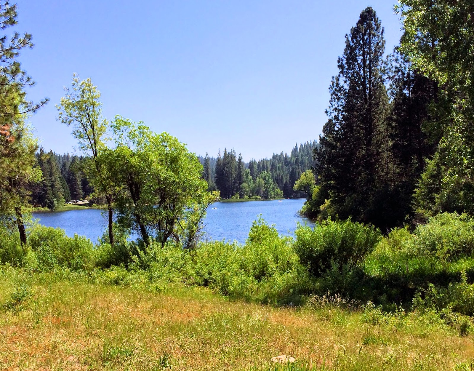 california, arnold, mother-lode, gold country