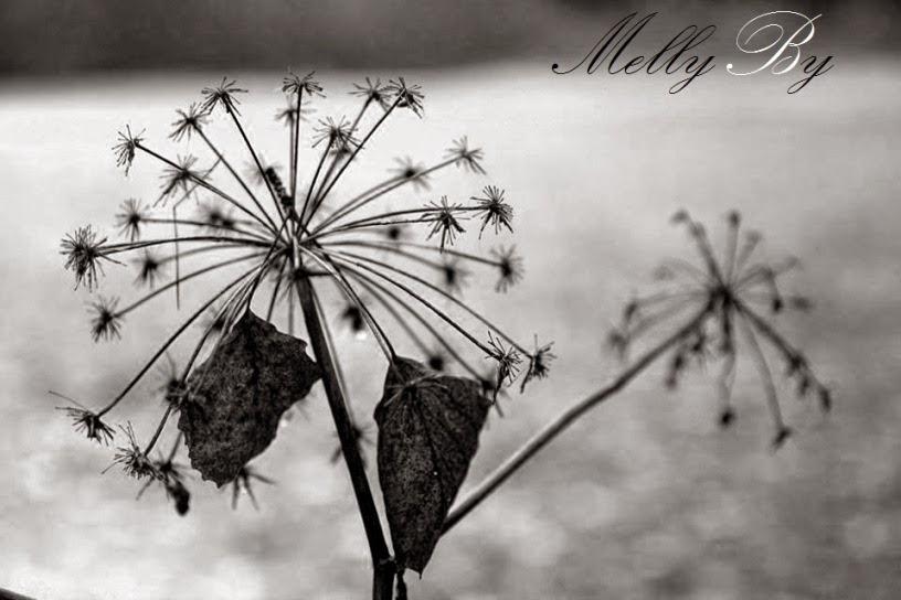 MellyBy