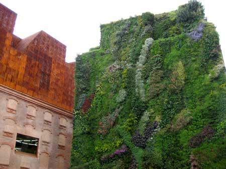 Arquirehab jardines verticales ecoeficiencia en fachadas for Jardines verticales espana