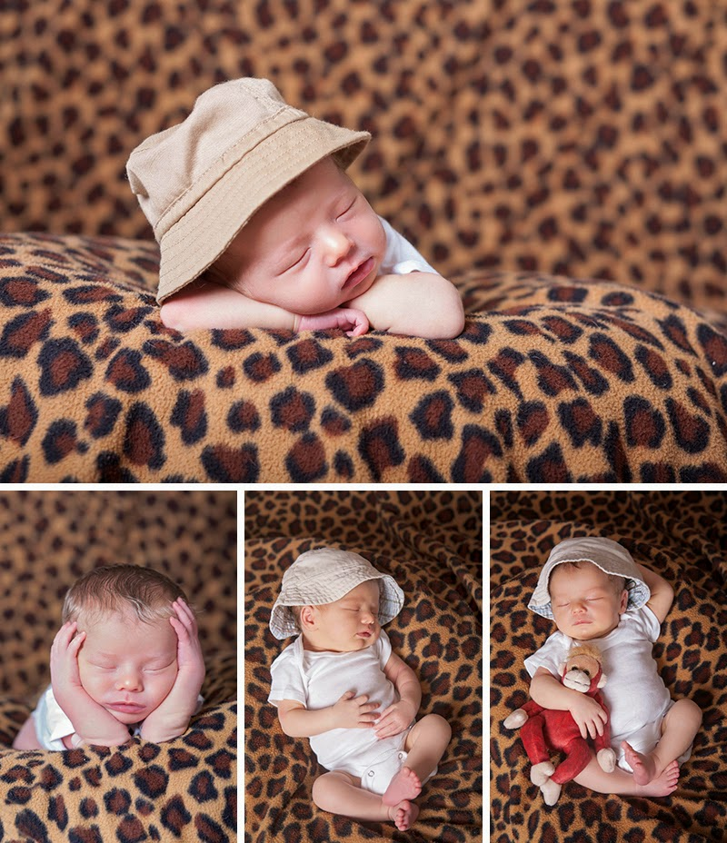 Newborn session Parker, PA Sandra Jackson Photography