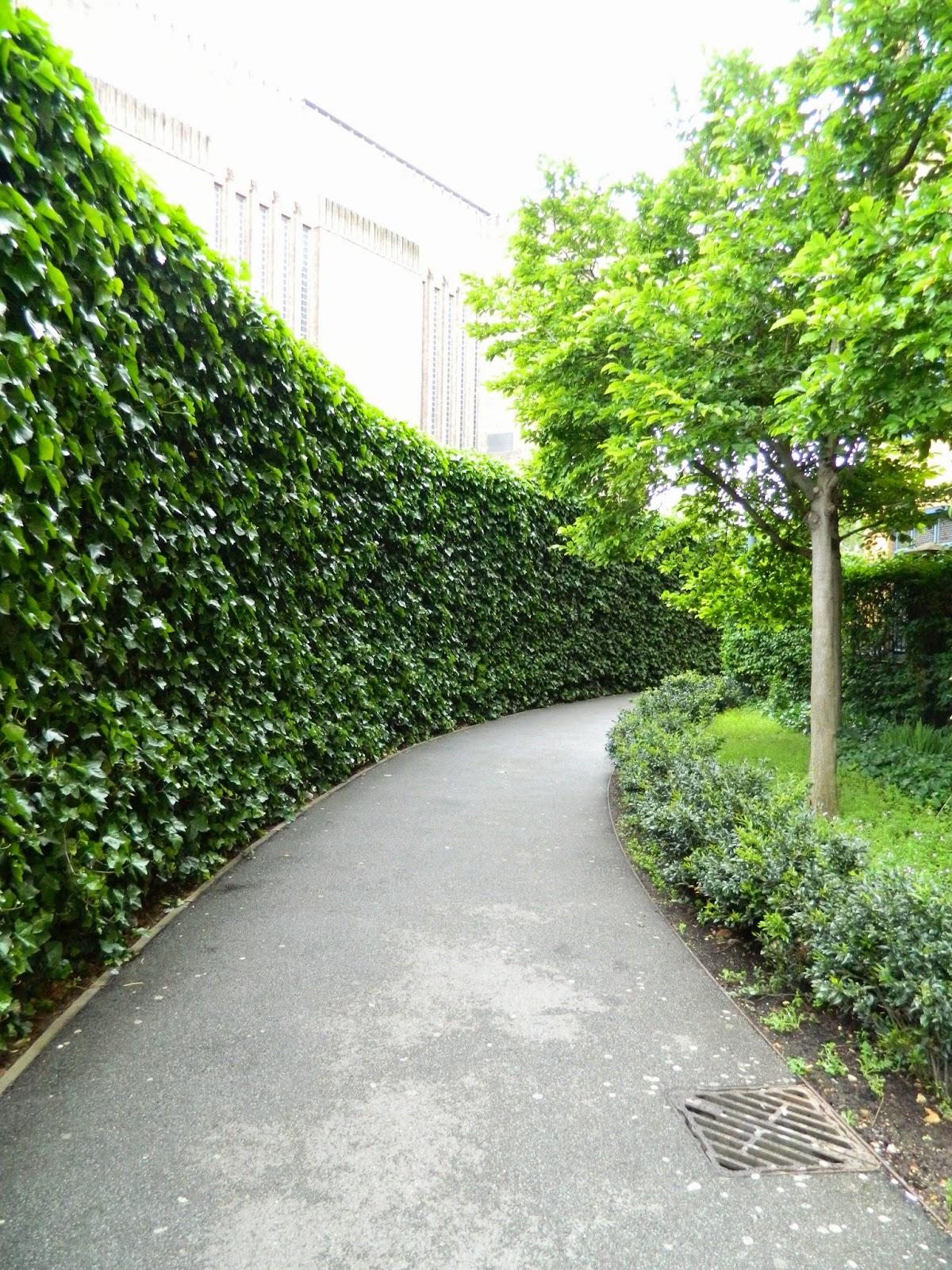 london nature bush curved tree tate modern