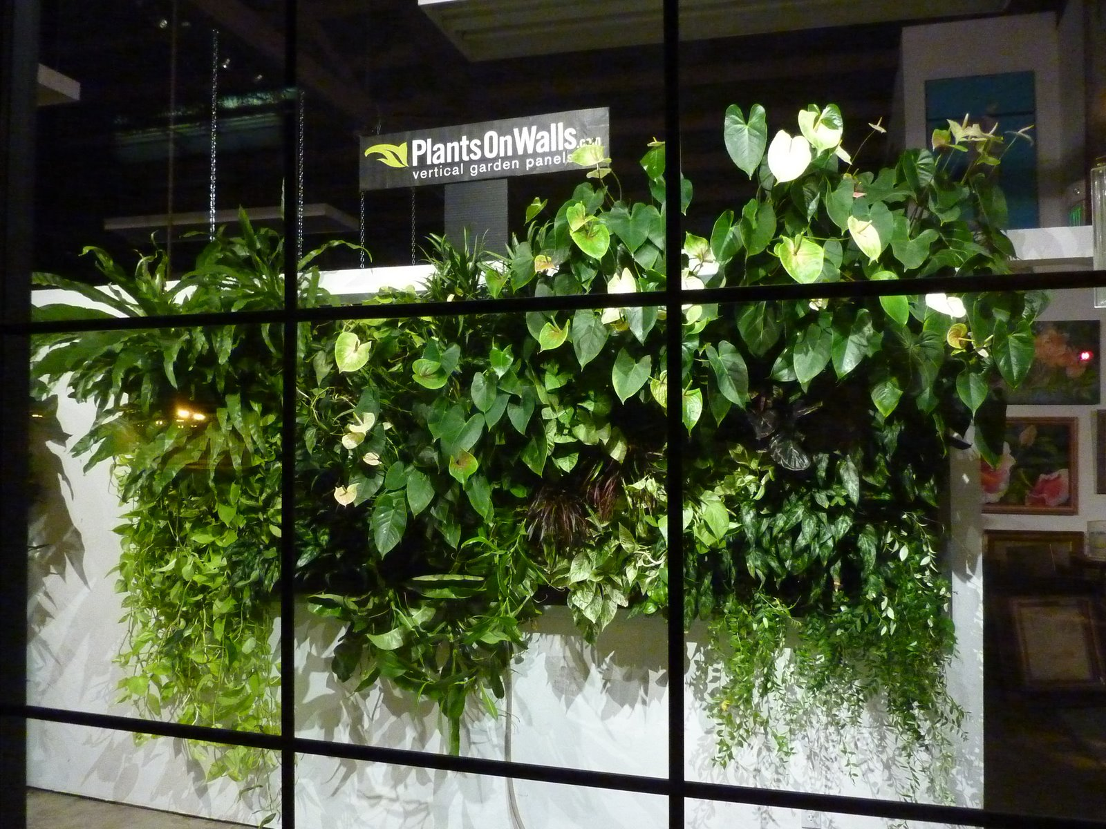 Plants on walls vertical garden systems plantsonwalls for Vertical garden wall systems