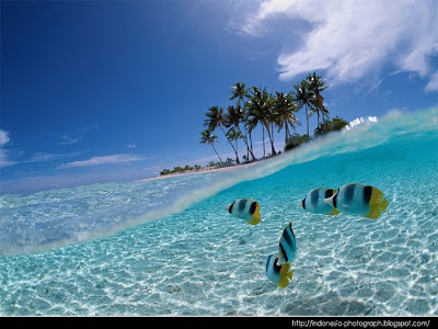 Pemandangan+Pantai+Terindah Foto Pemandangan Pantai Terindah di Dunia 2013
