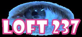 LOFT 237