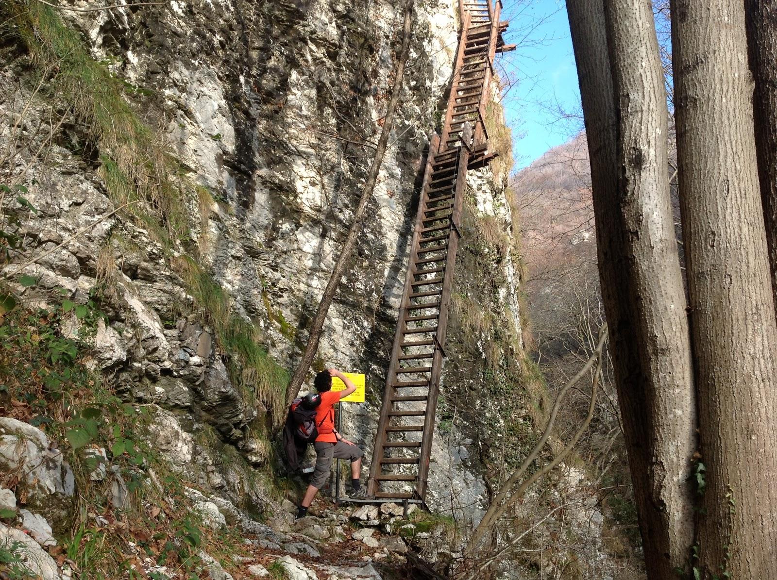 Mountain luke scala di legno scala di ferro - Scale di ferro ...