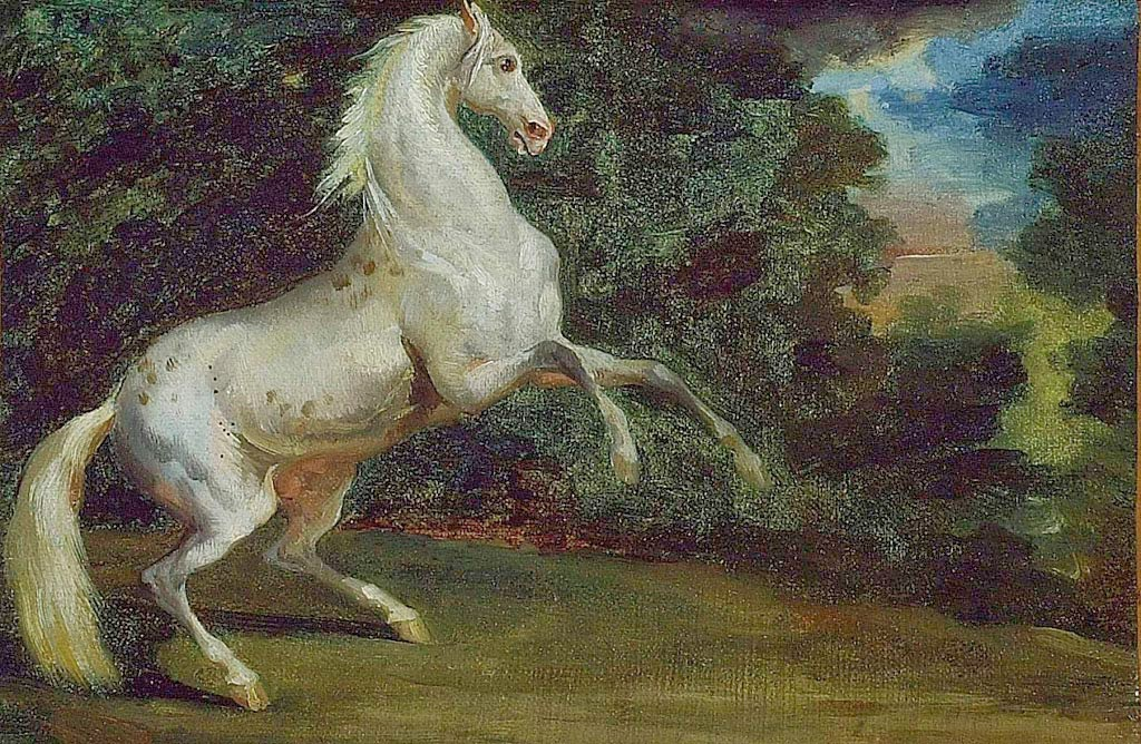 a description of the story of the prancing horse as simple and fascinating In the classical description of a unicorn, ancient scholars wrote of a horse-like creature with a tusk that is similar to a narwhal's sticking out from its forehead and sometimes depicted with a goat's beard.