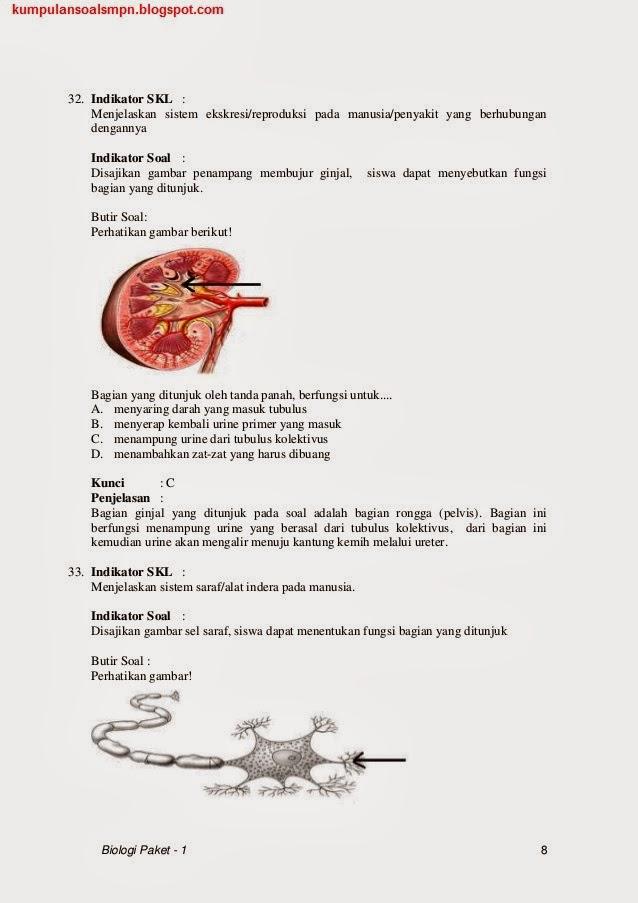 Soal Prediksi Dan Bocoran Un Bahasa Indonesia Smp 2014 Newhairstylesformen2014 Com