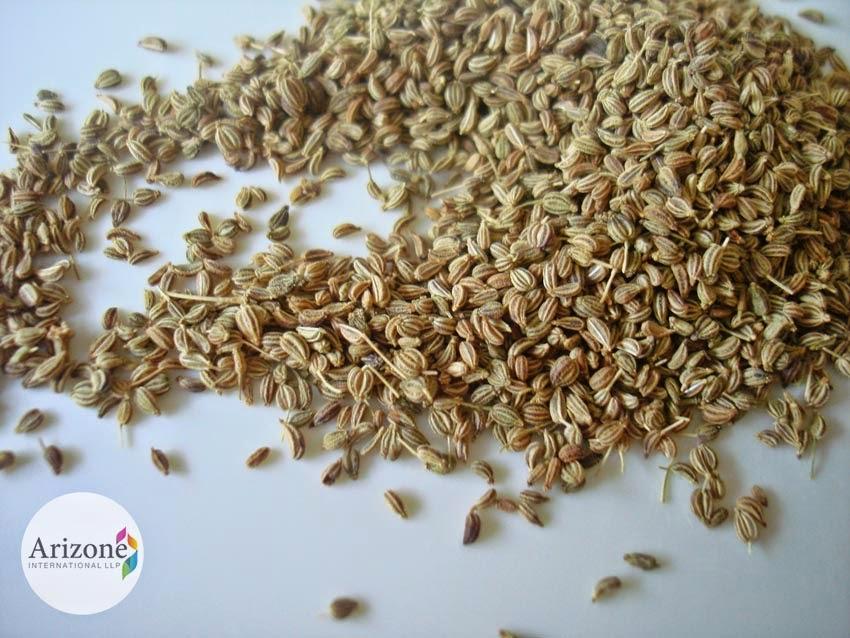 Ajwain Seed, Ajvain Seed, Bisoph's Weed Arizone International LLP Vapi