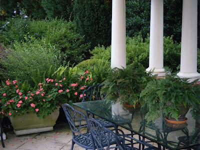 A Chef in the Garden: Summer Whites