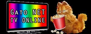 Gato NET TV Online - Canais de TV ao vivo para assistir pelo computador, celular e Smart TV